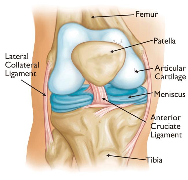primele semne de leziuni ale genunchiului