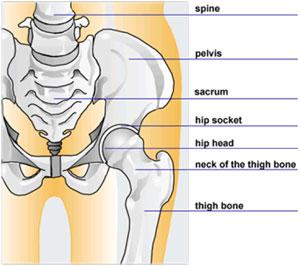 Anestezia artrozei șoldului Dureri la nivelul genunchiului constant