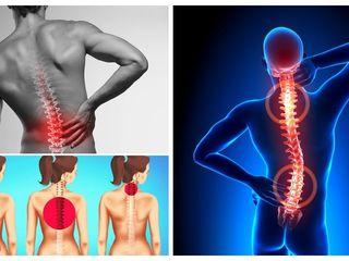 dureri de spate amorțeală a membrelor și articulațiilor îngenunchează articulațiile de ajutor