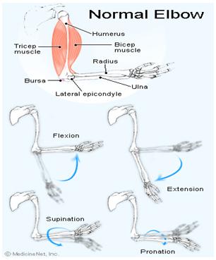 limitarea flexiunii articulației cotului cu durere)