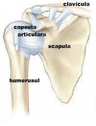 deteriorarea capsulei articulare a articulației umărului)