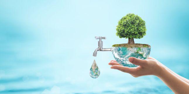 tratament comun cu apă batmanghelidge)