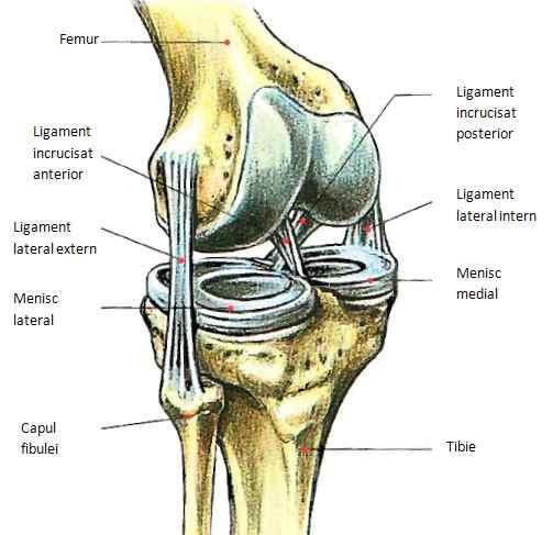 Entorse - Dr. Gabriel Ștefănescu Tratamentul ligamentelor entorse ale articulației umărului