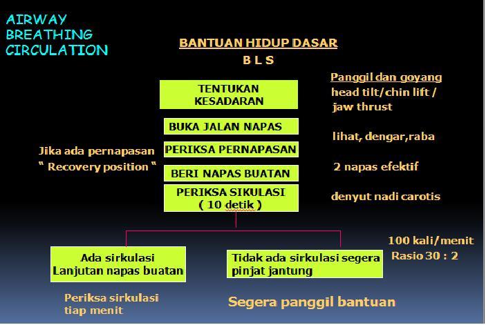 Articulații ale părții drepte a corpului