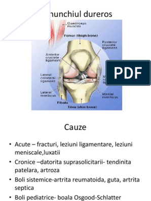 artrita de genunchi cu antecedente pediatrice)