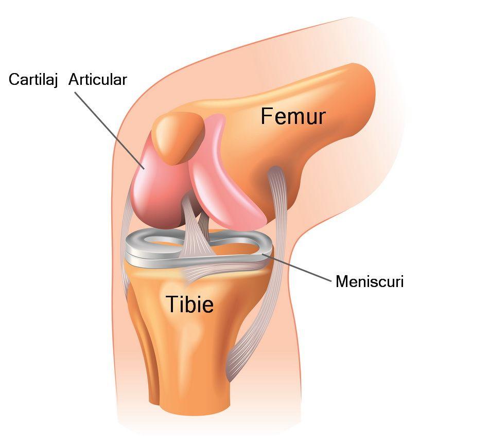 după cădere, articulația genunchiului doare)