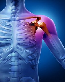 fitobalmul durerii musculare și articulare)