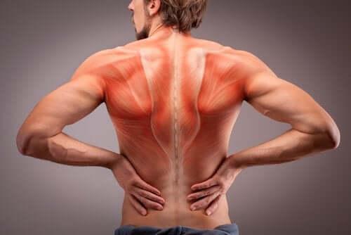 Medicamente pentru tratarea durerii musculare și articulare - nightpizza.ro
