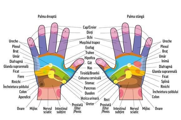 articulațiile degetelor mâinilor unui masaj)