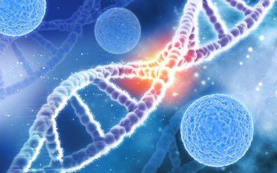 Artrita ar putea fi vindecată cu ajutorul celulelor stem | nightpizza.ro