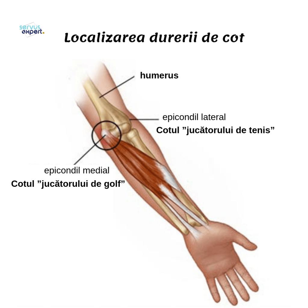 dacă brațul în articulația cotului doare