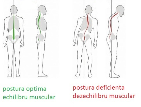cum să dezvolți articulațiile după o accidentare