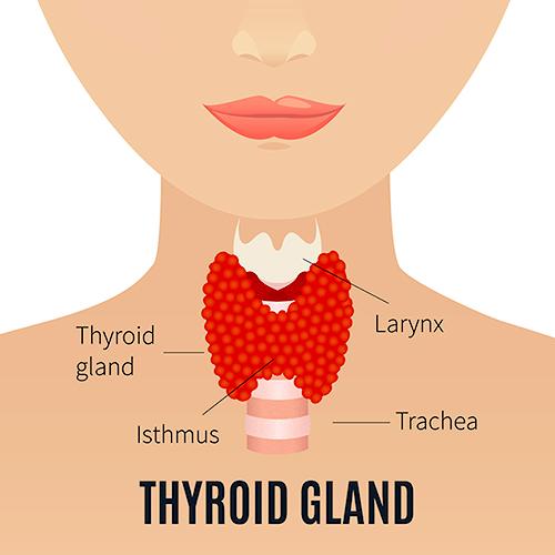 dureri articulare tiroidiene