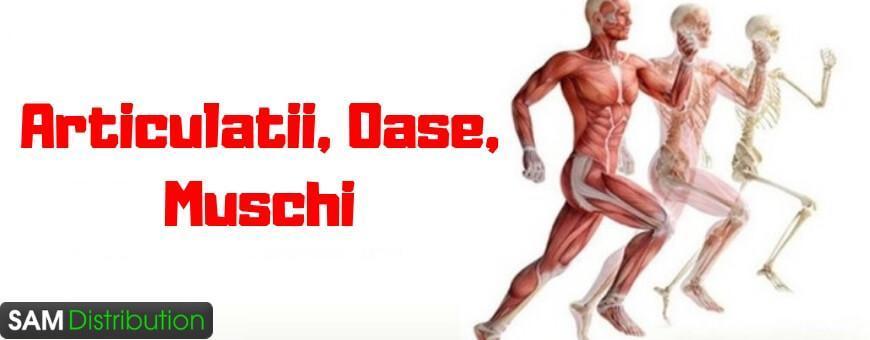 fitobalm pentru durere. mușchii și articulațiile