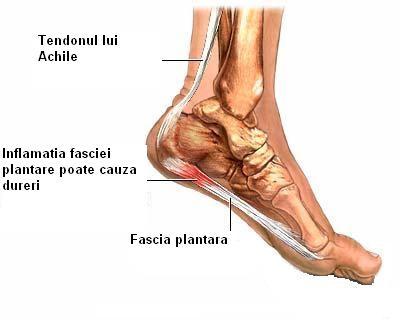 durere în articulațiile piciorului în timpul alergării