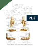tratamentul artrozei articulației cotului 3 grade