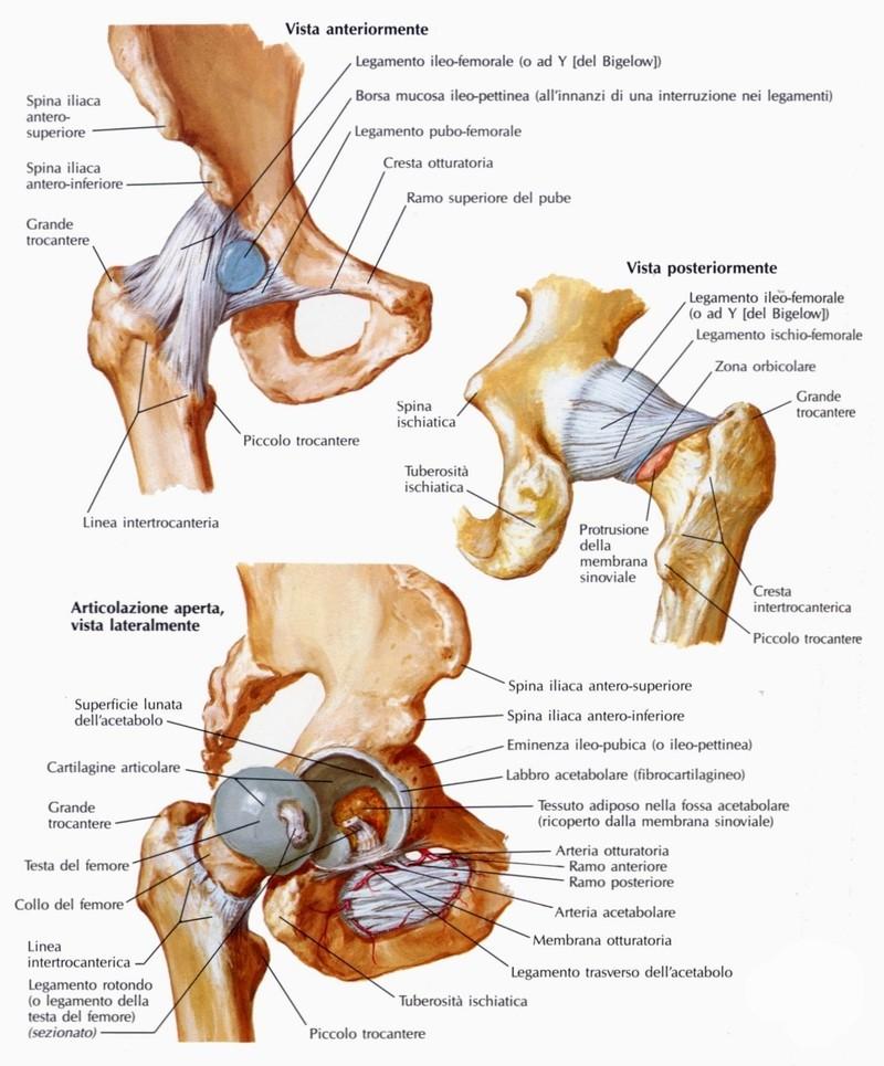 durerile articulare de la rece rigiditate și durere în articulația gleznei