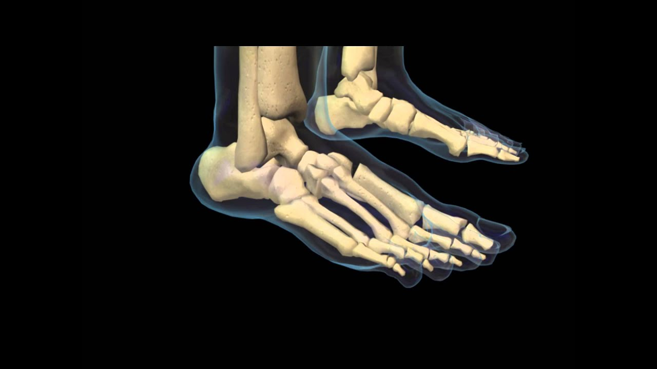 de ce articulația șoldului doare după alergare cum să identifice deteriorarea ligamentelor gleznei