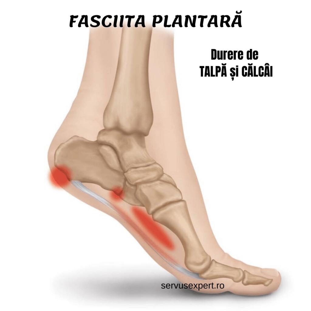 durere la nivelul vaselor sau articulațiilor picioarelor