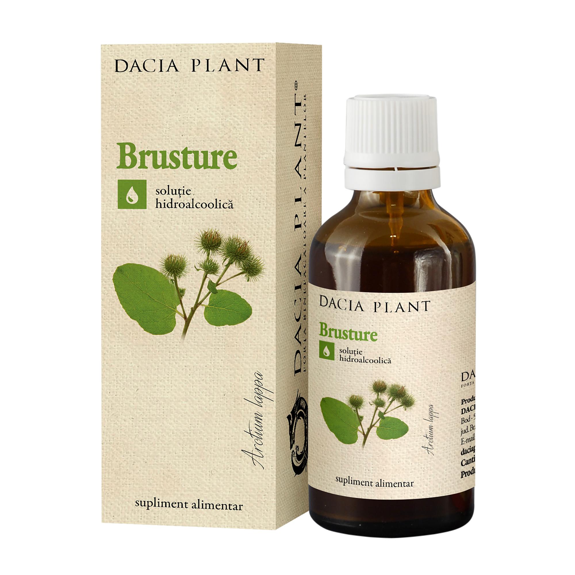 5 plante care combat durerile de articulaţii | nightpizza.ro