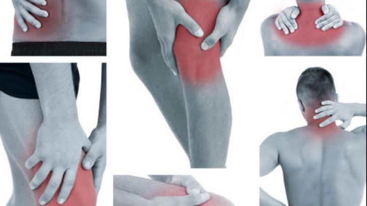 cum se folosește maklura cu dureri articulare)