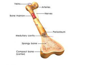 vă puteți înălța mâinile cu artrită artroza vertebrală a tratamentului coloanei vertebrale cervicale
