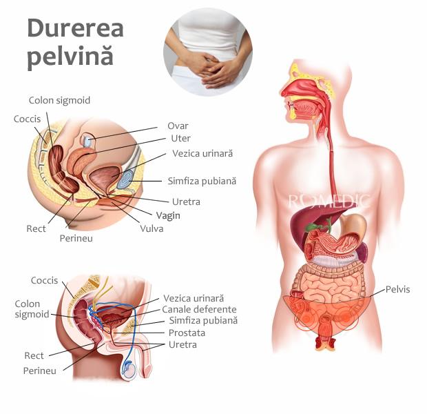 tratamentul durerii articulare vaginale și musculare