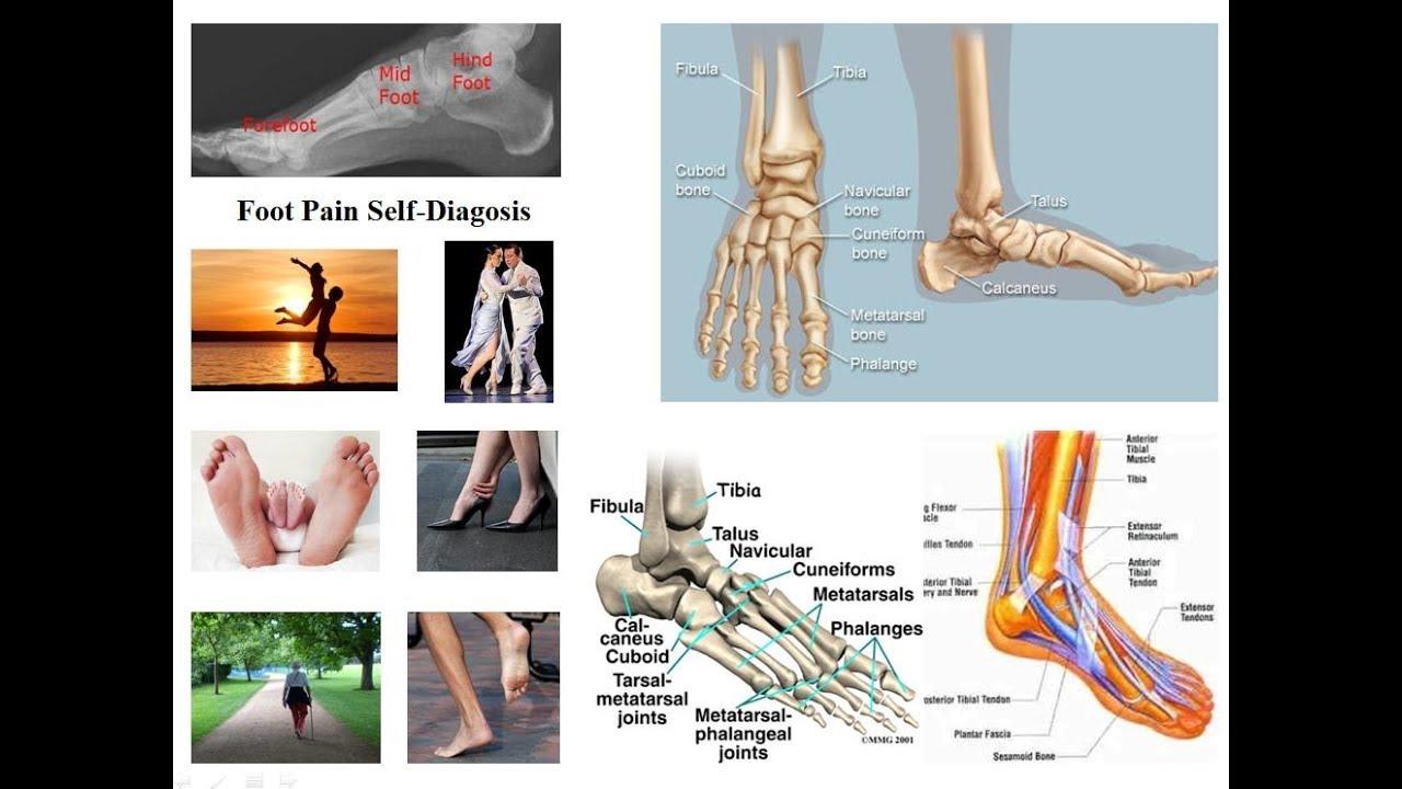 umflarea și roșeața cauzelor articulației gleznei calmante noi pentru îmbinări
