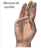 vătămarea capsulei articulare a degetului