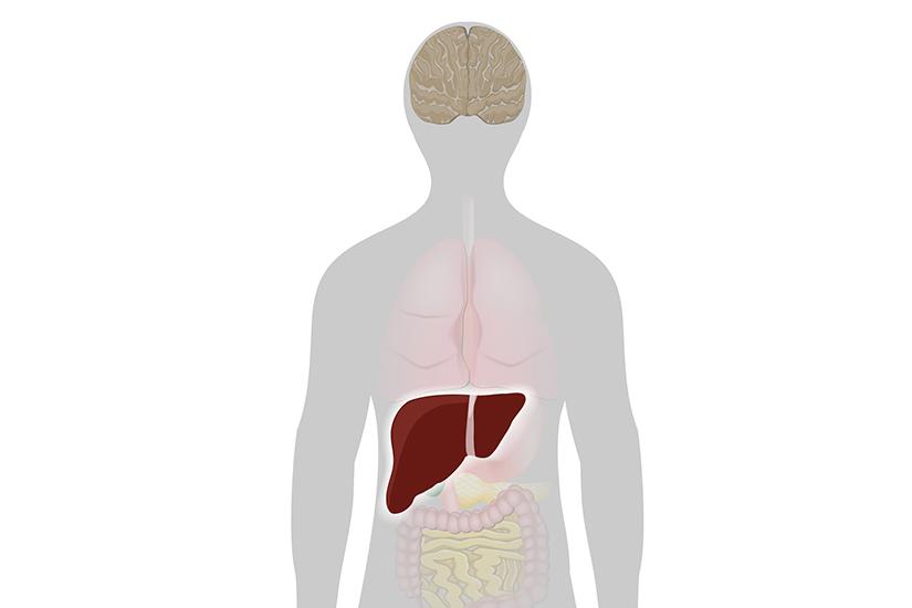 dureri articulare probleme hepatice)