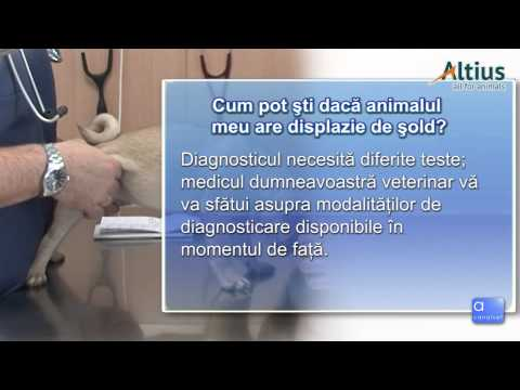 ESR mare și dureri articulare dureri de genunchi în timpul efortului