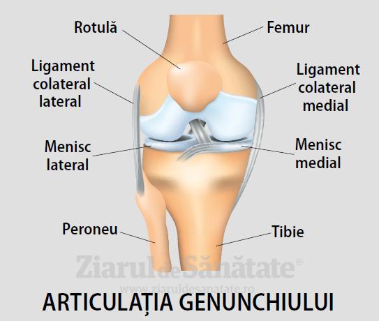 Deteriorarea ligamentului lateral al genunchiului - Dureri articulare ale pielii uscate